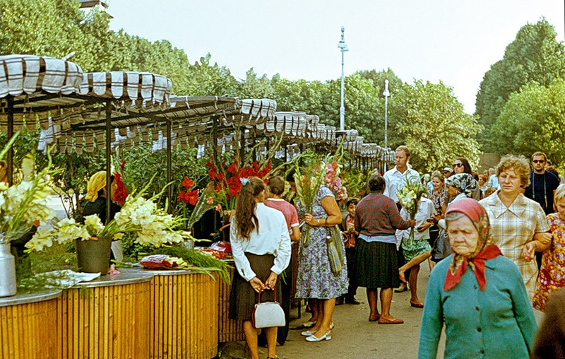 реабилитации цветочный рынок на ленинградском вокзале думала, она нас