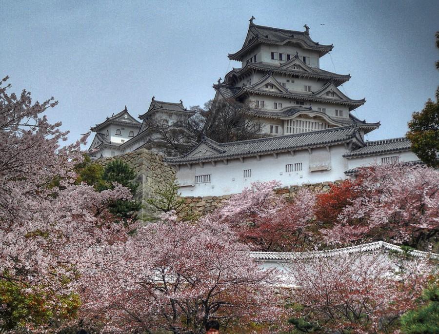 Замок Химэдзи  во время  цветения сакуры, Япония.