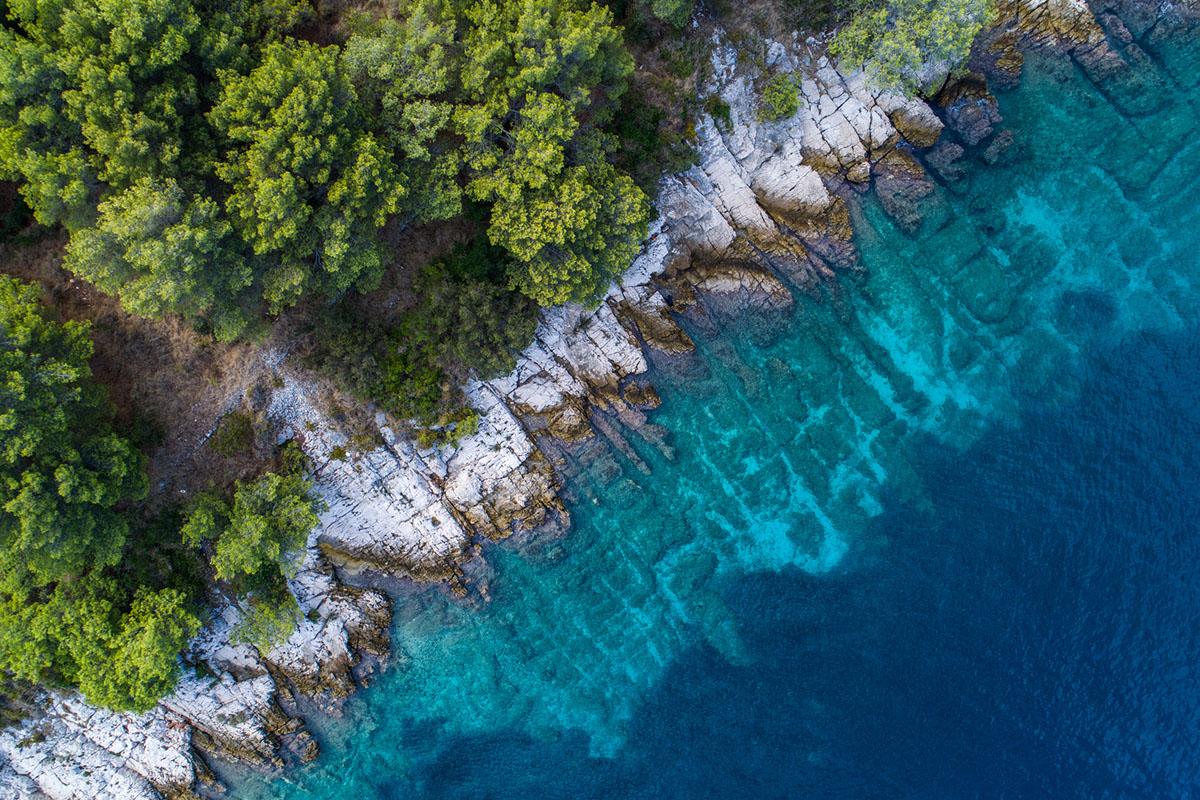 види Хорватії
